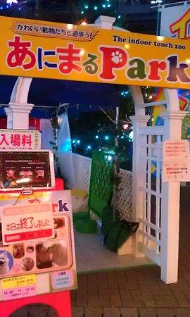 Tokyo Dome: Контактный зу