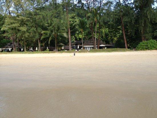 Moracea by Khao Lak Resort : Vue de l'hôtel depuis la plage