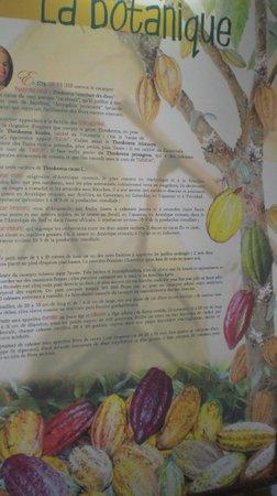 Musee du Cafe et du Cacao / Domaine Chateau Gaillarg: explication sur affiche