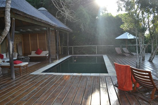 Trogon House and Forest Spa: Terrasse principale