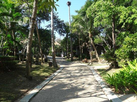Lanta Sand Resort and Spa: Jardin