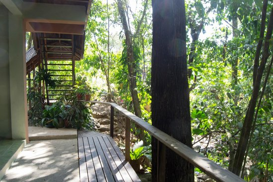 Hospedaje El Bosquecito: balcon