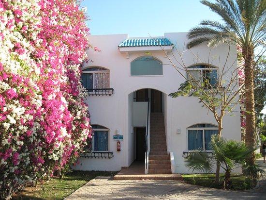 Sultan Gardens Resort: camere vicino reception
