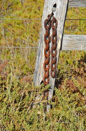 Werribee Park : Rusty chain
