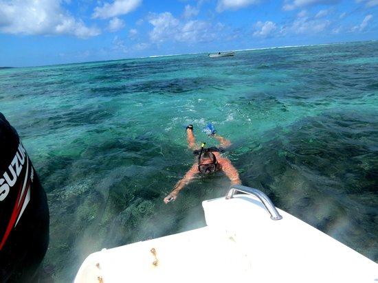 Veranda Palmar Beach: snorkel