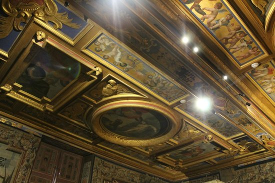 Château de Cheverny : The ceiling as a peace of art