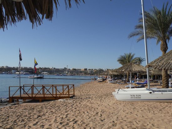Sharm Dreams Resort : Beach at Hilton Sharm el Sheikh