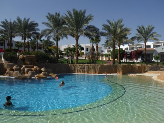 Sharm Dreams Resort : Pool area