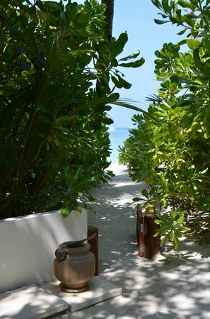 Constance Halaveli: The path to the beach from our villa