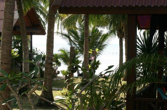 Asia Bungalows: Terrassenaussicht