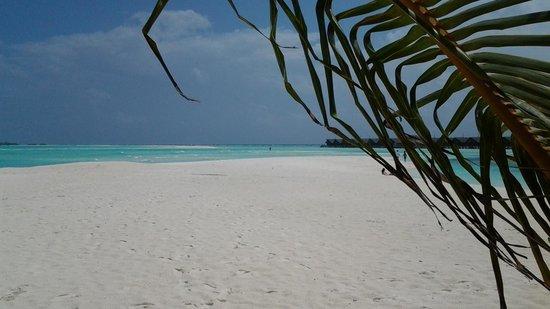 LUX* South Ari Atoll: laguna