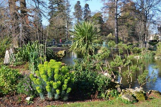 Jardin Public : Piante di varia origine