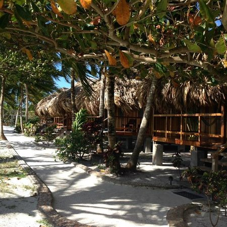 St. George's Caye Resort: beach facing Cabanas