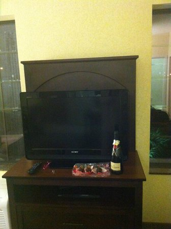 Staybridge Suites Corpus Christi: TV