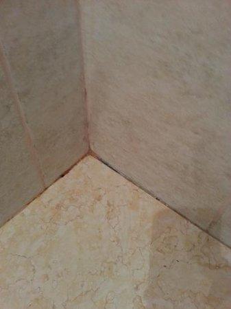 Howard Johnson Hotel & Marinas San Pedro Resort: Falta de mantamiento baño habitación