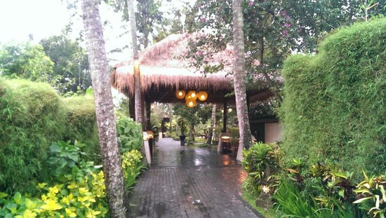 Kupu Kupu Barong Villas and Tree Spa: Entrance