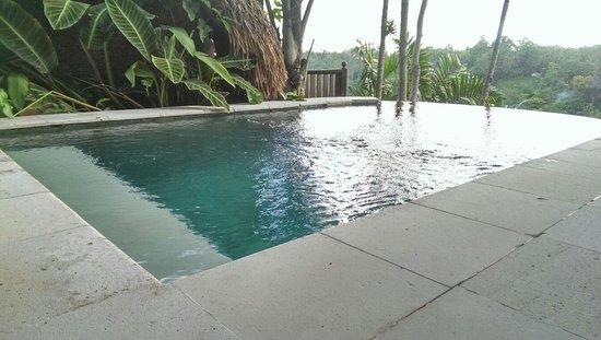 Kupu Kupu Barong Villas and Tree Spa: Villa 3 plunge pool