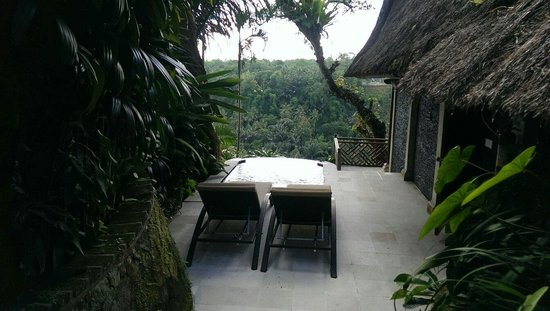 Kupu Kupu Barong Villas and Tree Spa: Villa 3 infinity plunge pool