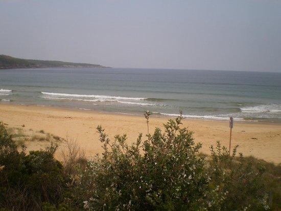 South Coast Holiday Parks Eden: The beach