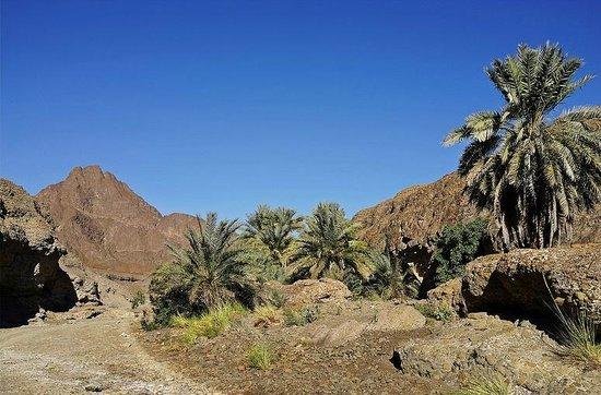 "Hatta Rock Pools: Hatta Dry ""Pools""  : Wadi Hatta"