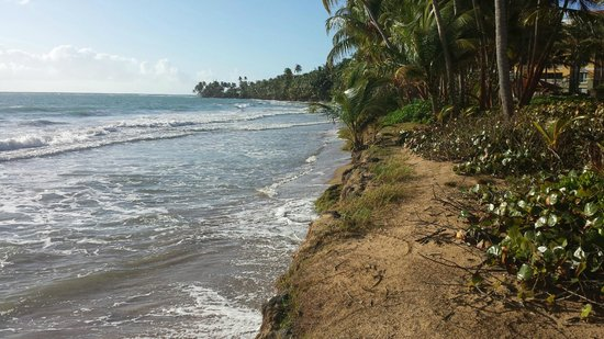 Humacao, Puerto Rico: 'beach' looking south