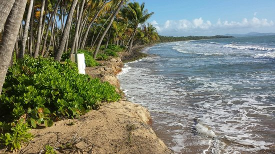 Humacao, Puerto Rico: 'beach' looking north