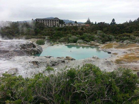 Te Puia: Голубое озеро