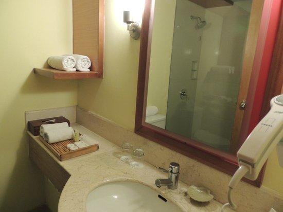 Bali Rani Hotel: Hygenic Bathroom