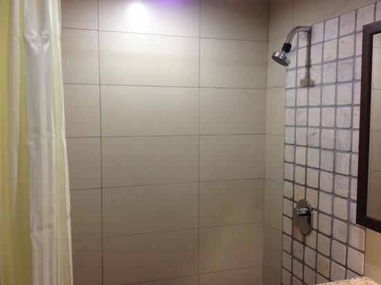 Swan Garden Hotel: Shower Area