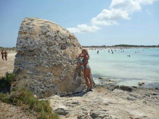 Playa de Ses Illetes: Un particolare della spiaggia..