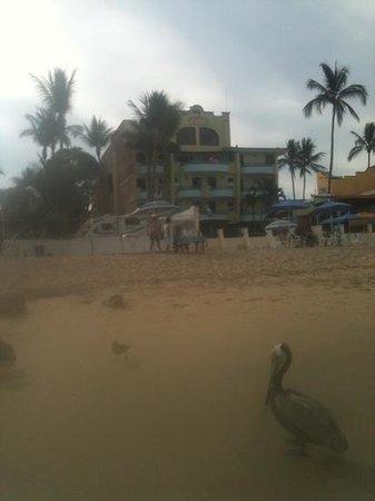 Hotel Jacqueline: great walking beach