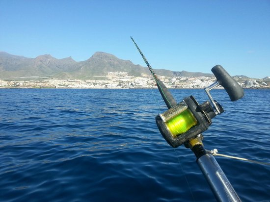 Happy Hooker Fishing Tour: Tenerife from the Happy Hooker boat