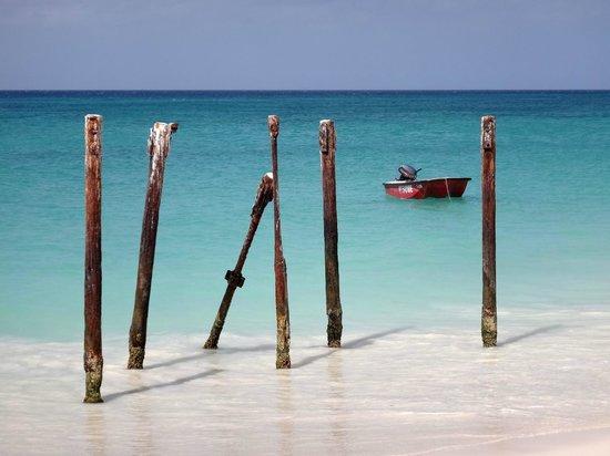 Tamarijn Aruba All Inclusive: Playa