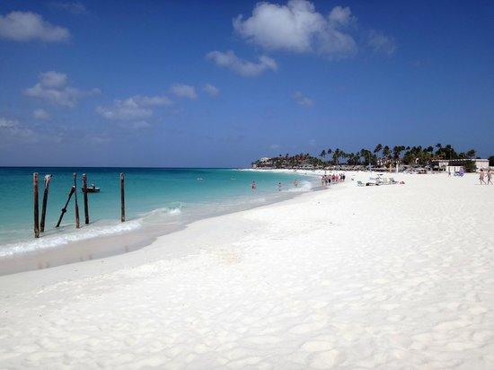 Tamarijn Aruba All Inclusive: Bahía entre Tamarijn y Divi All Inclusive