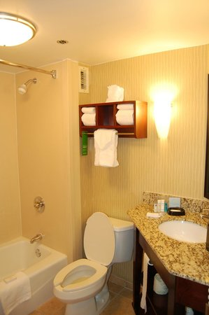 Hampton Inn Austin-North at I-35 and Hwy 183: clean bathroom