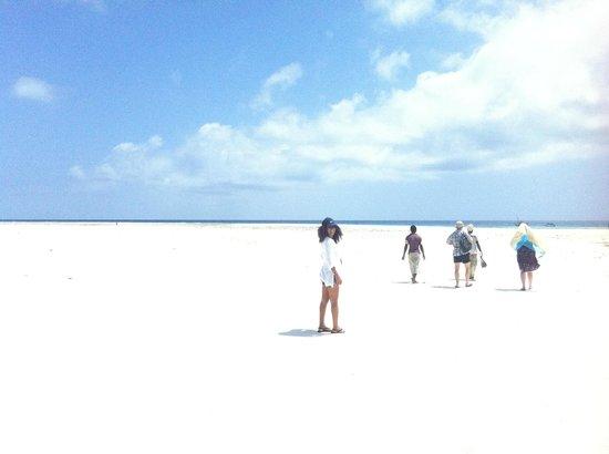 Mamamapambo Boutique Hotel: Zanzibar: Matemwe the way to Mnemba Island