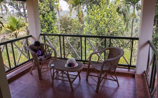 Glenora Homestay: View from Premium cottage