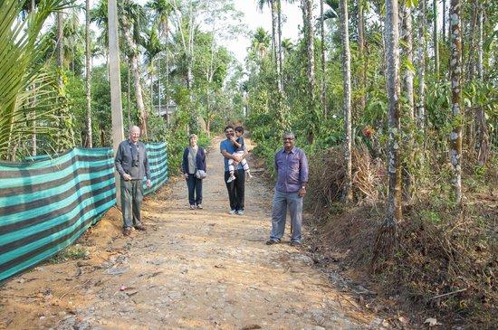 Glenora Homestay: Plantation walk