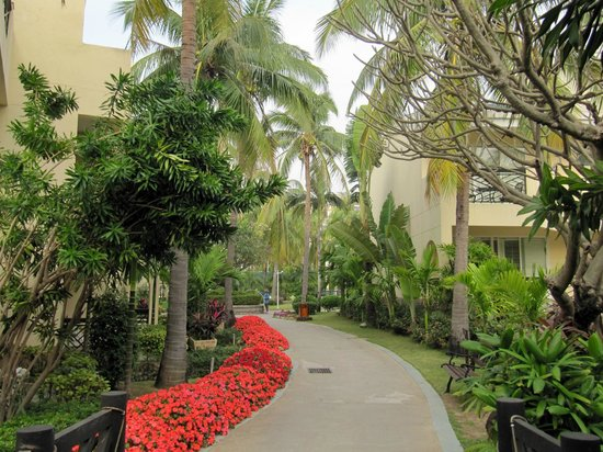 Palm Beach Resort & Spa Sanya : На территории отеля