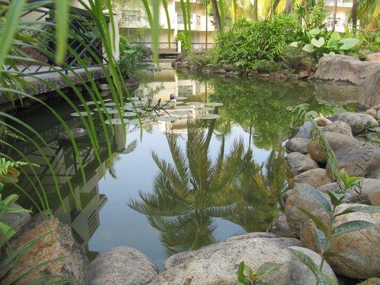 Palm Beach Resort & Spa Sanya : Пальмы не только над головой