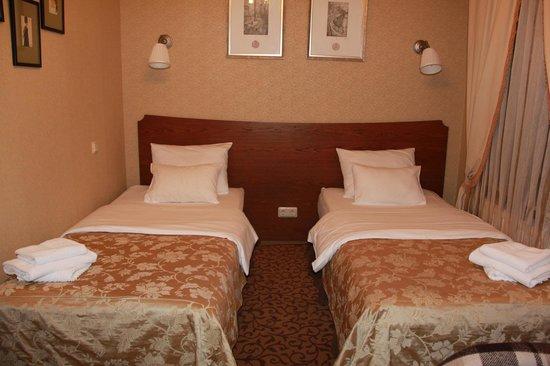Admiralteyskaya Hotel: Номер