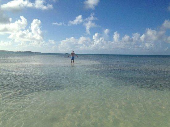 Jumby Bay Island: Sandbar