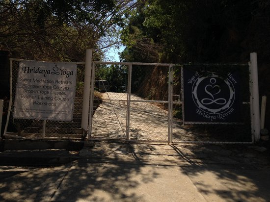 Hridaya Yoga: Arriving at the school campus