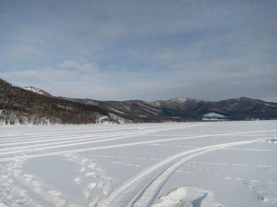 Lake Kanayama Forest Park : 湖の上に立ってます