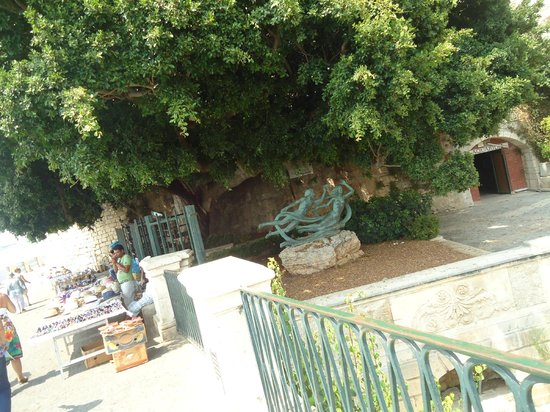 SAT Group Tours : Fonte Aretusa em Ortigia