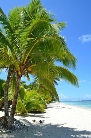 Manuia Beach Resort : now you know what I mean by paradise