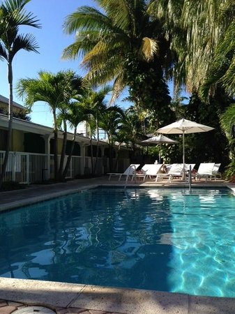 Almond Tree Inn: Pool and open area