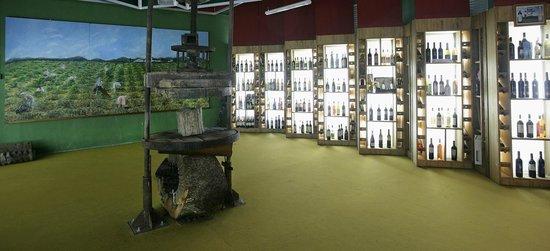 Museo del Aceite Andaluz: SALA DEL VINO ANDALUZ