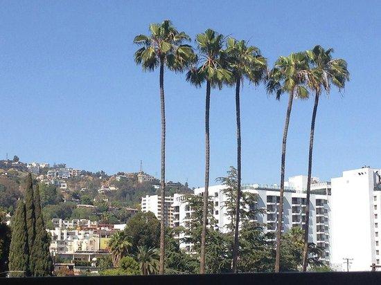 Le Montrose Suite Hotel: View from Le Montrose