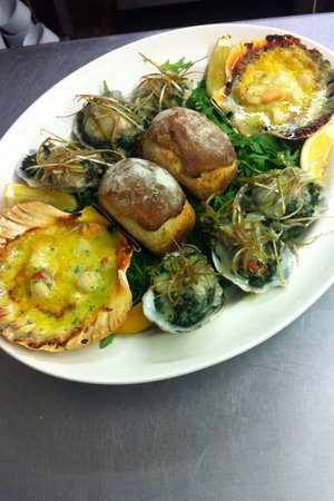 The Black Bull: Seafood medley of Scallop Gratin & Oysters Rockafella